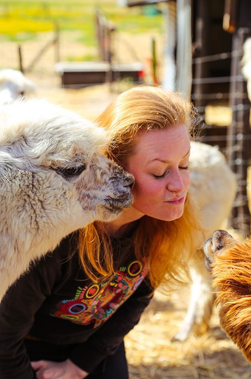 Akelei Alpaca Farm Tour Kiss