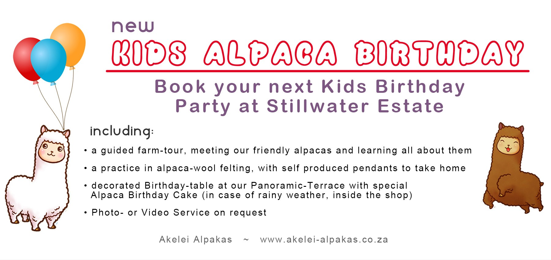 Kids Alpaca Party